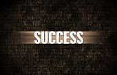 Success in Business as Motivation in Stone Wall poster