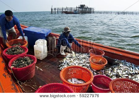 Fishing Activities At The Mouth Of Mae Klong River, Thailand