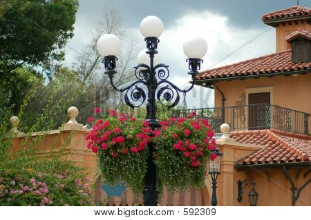 Lamp Post And Flowers