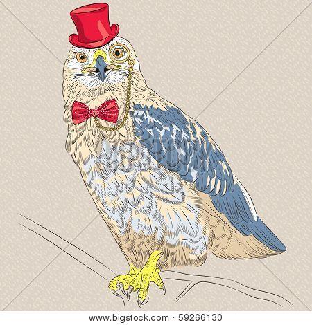 Vector Hipster Bird Rough-legged Buzzard