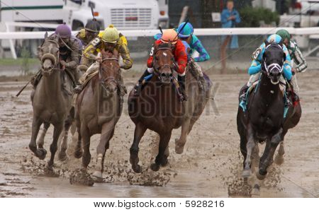 Muddy Horse Race