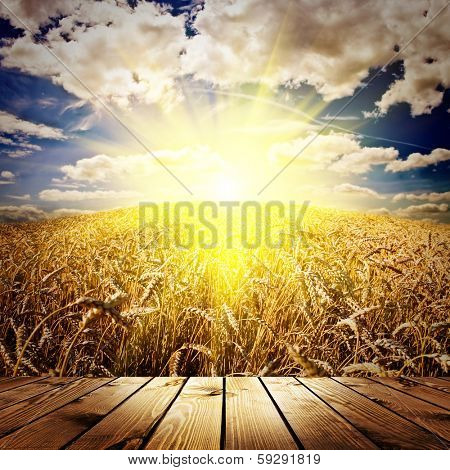 wood textured backgrounds in a room interior on the wheat and sky backgrounds