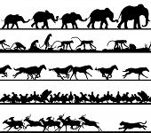 Set of editable vector animal silhouette foregrounds with all figures as separate objects poster