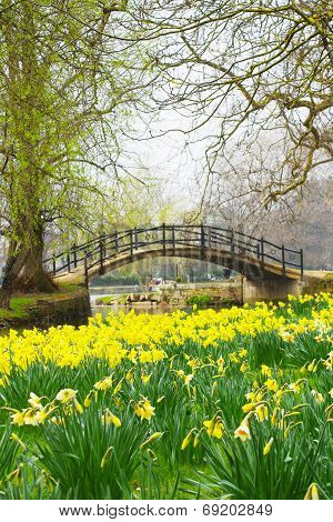 Spring in England