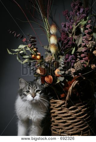 poster of Cat with flora in still life