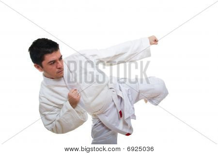 Young adult doing aikido