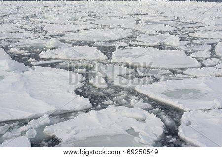 Drift Ice In Abashini, Japan