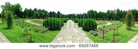 Botanical Garden Iasi Romania