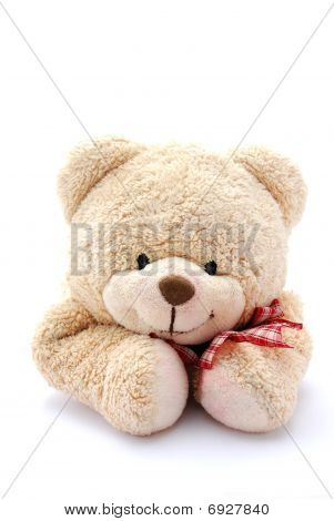 Teddy bear portrait