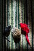Three mice on a cozy motley rug poster