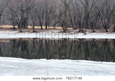 Icy Mississippi River And Woods In Crosby Park