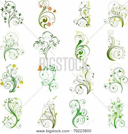 Set of floral vector elements