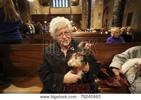 Breeder Paula Segnatelli with Yorkies