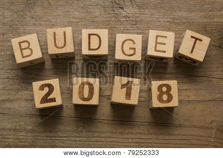 Budget for 2018, wooden blocks on a wooden background