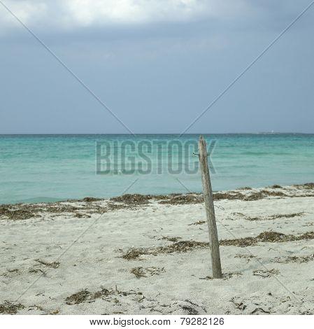 Untroubled Beach
