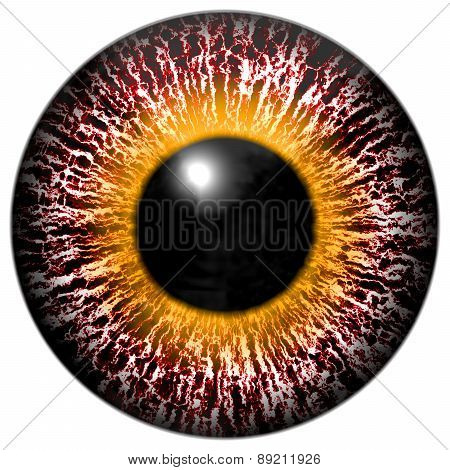 Bloody Pink-eye Of Alien With Yellow Ring Around The Pupil