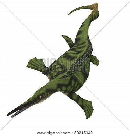 Hepehsuchus Over White