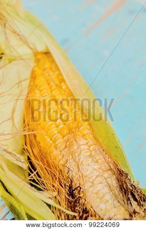 Bad rotten corn ear on rustic wooden table undeveloped maize ear selective focus with shallow depth of field. poster