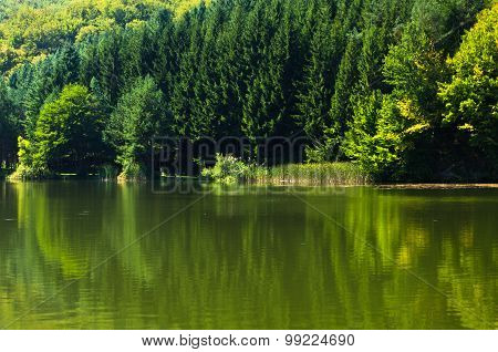 Beautifull nature and greenery at the lake in Semenic national park, Banat region