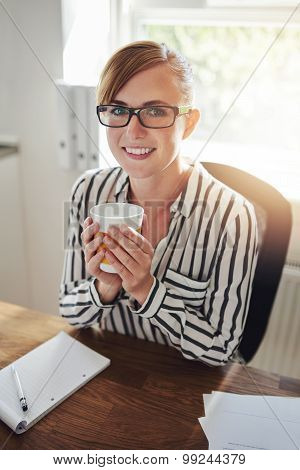 Smiling Businesswoman Working From Home