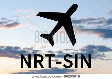 Airplane icon and inscription Sin-Nrt