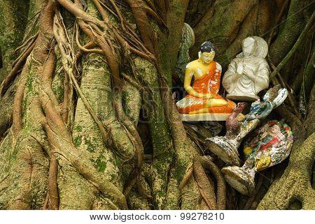 Old Buddha And Hindu Statues