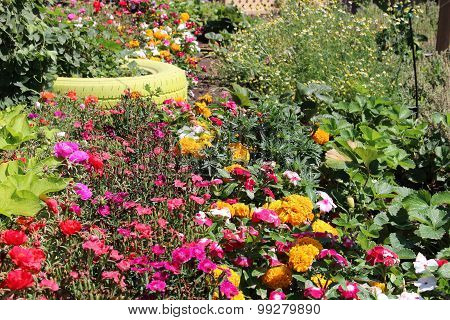 Flowers And Vegetables Garden