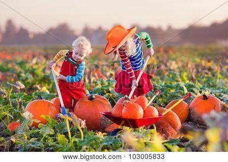 Kids Picking Pumpkins On Halloween Pumpkin Patch
