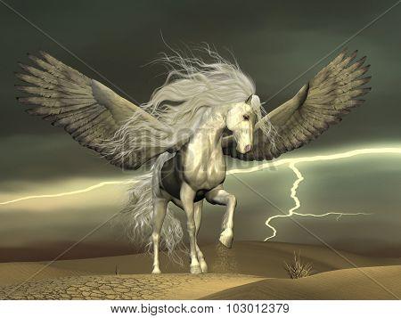 Pegasus And Dark Skies