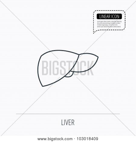 Liver icon. Transplantation organ sign. Medical hepathology symbol. Linear outline icon. Speech bubble of dotted line. Vector poster