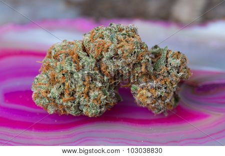 Conspiracy Kush Medical Marijuana