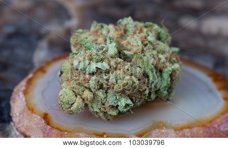 Godfather OG Medicinal Medical Marijuana