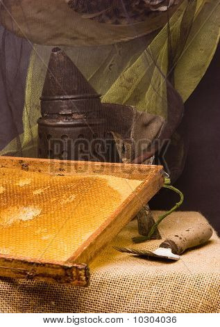 Basic attributes of every beekeeper