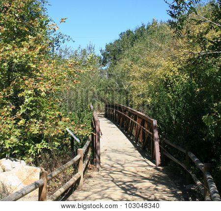 Douglas Preserve Footbridge