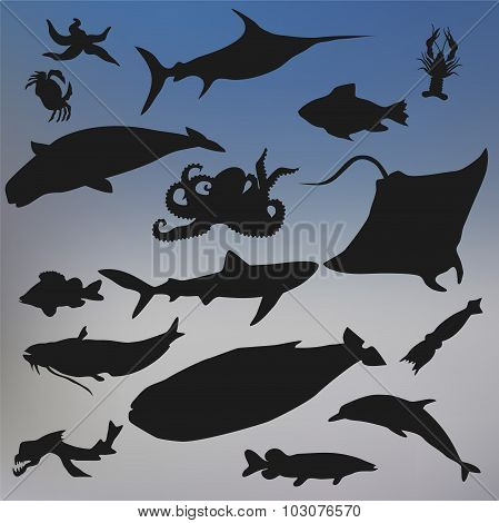 Set Of Fish Silhouette Icon On The Blurred Background. Stock Vector