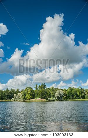 Beautiful russian landscape with willows