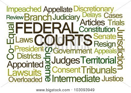 Federal Courts Word Cloud on White Background