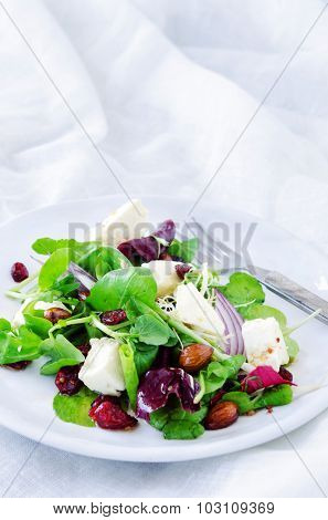 Spinach watercress green mix salad with cranberry, almonds and feta for a gourmet light meal lunch dinner appetiser