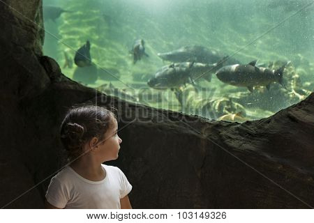 Toddler Girl Visiting A River Aquarium