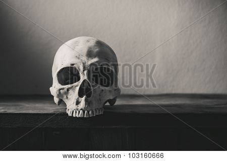 Still Life Black And White Photography  With Human Skull On Wooden Table