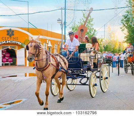 Man Working As A Coachman At Fair