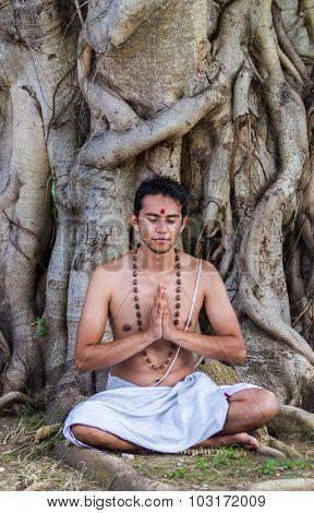 Meditation Under Tree