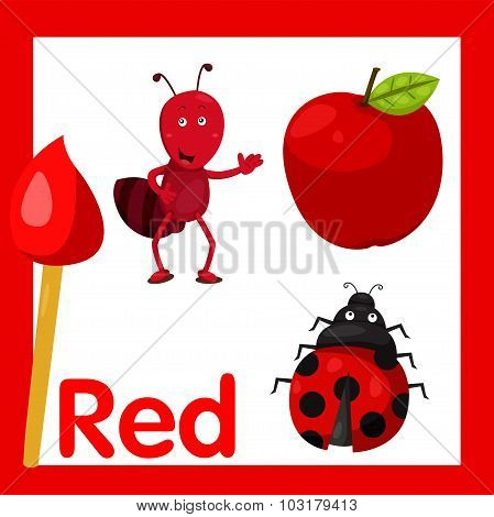 Illustrator of red color