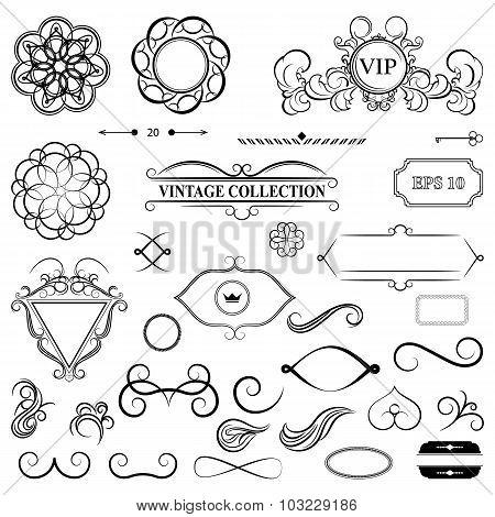 Vintage set decor elements for menu. Elegance old hand drawing s