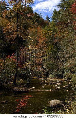 Fires Creek, North Carolina