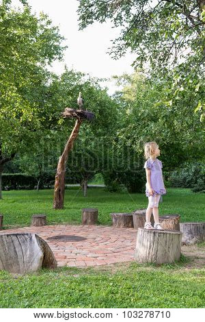 Little Girl On Stump In The Park