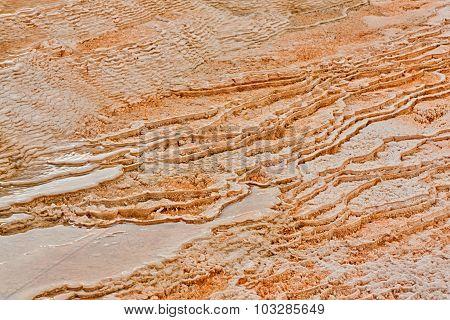 Textured Tiers Of Dryad Springs