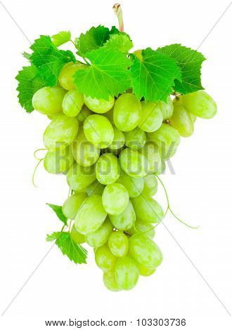 Fresh Bunch Of Green Grapes Isolated On White Background
