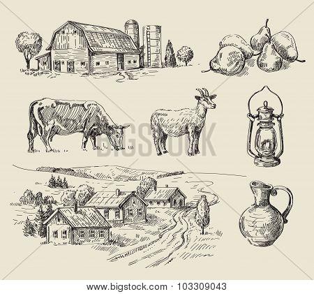 farm and animals hand drawn