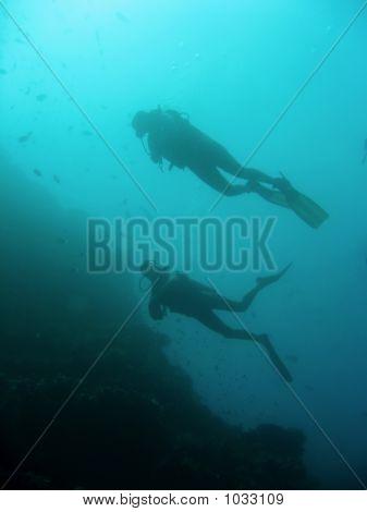 Sipadan Scuba Divers